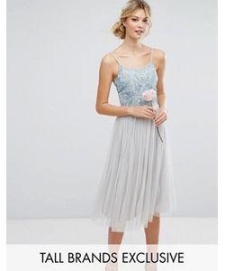 Maya Tall | Платье Миди С Отделкой И Пышной Тюлевой Юбкой