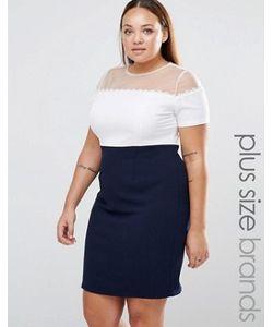 Koko | Платье Колор Блок С Сетчатой Вставкой И Цветочной Отделкой Plus
