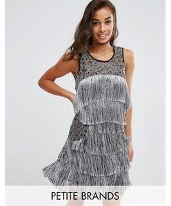 Boohoo Petite | Платье С Бахромой