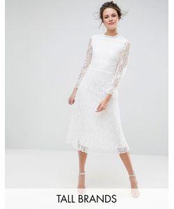 Little Mistress Tall | Короткое Приталенное Кружевное Платье С Высоким Воротом