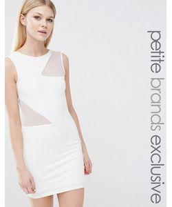 TFNC Petite | Облегающее Платье С Сетчатыми Вставками