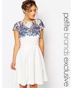 Paper Dolls Petite | Платье Для Выпускного С Кружевной Вставкой