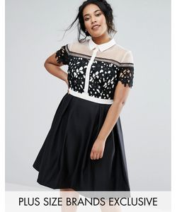 Chi Chi Plus   Платье 2 В 1 С Воротником Chi Chi London Plus