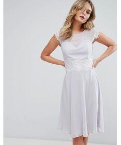 Elise Ryan | Приталенное Платье Миди С Кружевной Отделкой