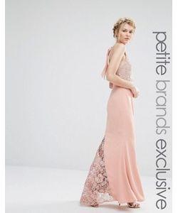 Jarlo Petite | Платье-Халтер Макси С Кружевным Верхом
