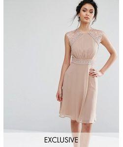Elise Ryan | Платье Миди С Кружевной Отделкой