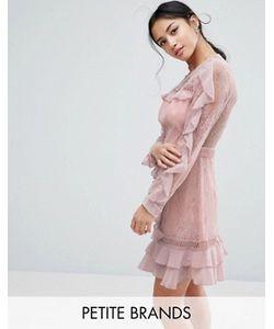 True Decadence Petite | Кружевное Платье С Длинными Рукавами И Оборками
