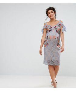 Hope and Ivy Maternity | Кружевное Платье Для Беременных С Вышивкой И Открытыми Плечами Hope