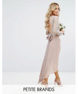 TFNC Petite | Кружевное Платье Миди С Бантом Сзади Wedding