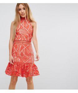 Jarlo Petite | Кружевное Платье Мини Для Выпускного