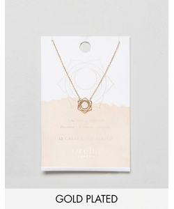 Orelia | Позолоченное Ожерелье С Подвеской