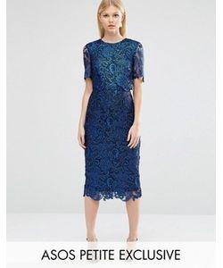 ASOS PETITE | Двухслойное Кружевное Строгое Платье С Покрытием
