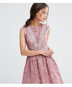 Little Mistress Petite | Кружевное Приталенное Платье Без Рукавов