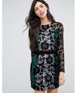 Endless Rose | Кружевное Платье Колор Блок С Длинными Рукавами