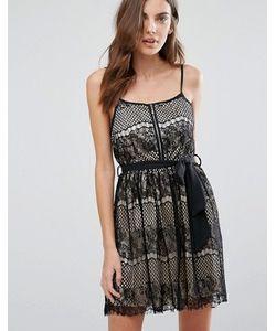 Qed London | Короткое Приталенное Платье С Кружевным Верхним Слоем