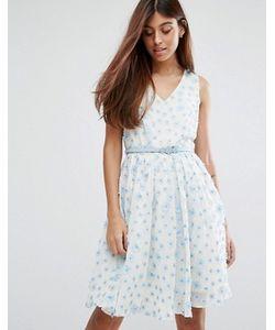 Darling | Lace Belted Skater Dress