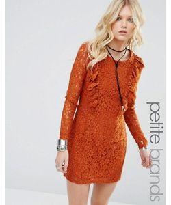 Glamorous Petite | Короткое Приталенное Платье С Кружевной Отделкой