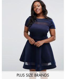 Club L | Короткое Приталенное Платье Размера Плюс С Сетчатыми Вставками Office
