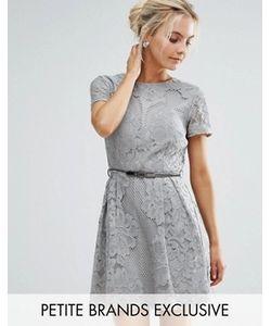 Little Mistress Petite | Короткое Приталенное Платье Из Кружева Кроше