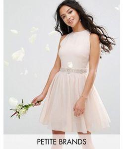 TFNC Petite | Платье Мини С Отделкой И Пышной Юбкой Wedding