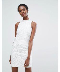 Endless Rose | Кружевное Платье Мини