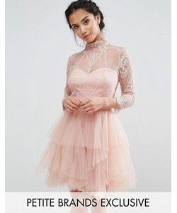 Chi Chi Petite   Кружевное Платье Мини Для Выпускного С Ярусной Юбкой Chi Chi London