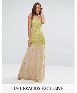 Maya Tall | Платье Макси С Топом-Корсетом И Отделкой