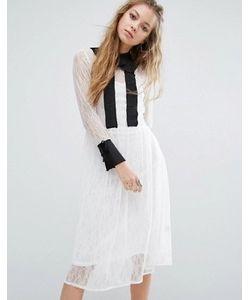 Navy   Кружевное Платье Миди С Воротником London