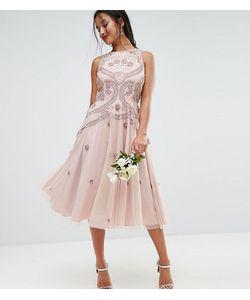 ASOS PETITE | Приталенное Платье Миди С Отделкой Бисером Wedding