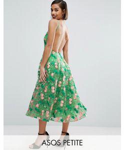 ASOS PETITE | Платье Для Выпускного Миди С Открытой Спиной И Цветочной Вышивкой