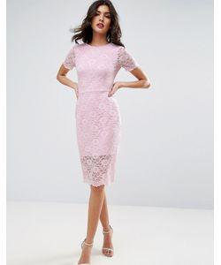 Asos | Облегающее Платье Миди С Кружевом С Фигурным Краем