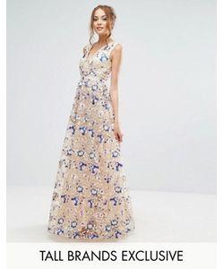 True Decadence Tall | Платье Макси С Цветочной Вышивкой