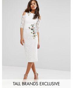 Little Mistress Tall | Кружевное Платье-Футляр С Открытыми Плечами И Цветочной Вышивкой