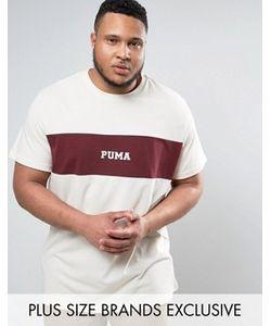 Puma | Бордовая Футболка Со Вставкой Plus 57531101 Эксклюзивно Для