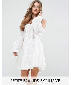 Glamorous Petite | Короткое Приталенное Кружевное Платье С Открытыми Плечами