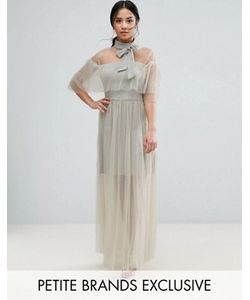 True Decadence Petite | Плиссированное Сетчатое Платье С Завязкой На Горловине