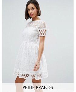 Boohoo Petite | Короткое Приталенное Платье С Вышивкой