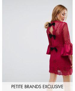 True Decadence Petite | Платье Мини А-Силуэта С Бантом И Кружевной Отделкой