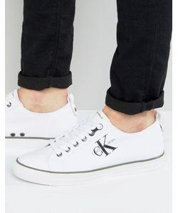 Calvin Klein | Парусиновые Кеды С Логотипом Arnold