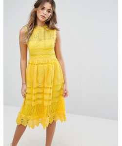 boohoo | Кружевное Приталенное Платье Миди