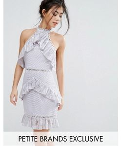 True Decadence Petite | Кружевное Платье Мини Без Рукавов С Оборками
