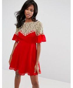 Asos | Короткое Приталенное Платье С Кружевной Кокеткой