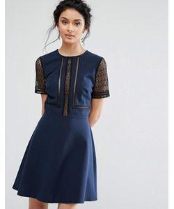 Elise Ryan | Короткое Приталенное Платье С Кружевными Вставками