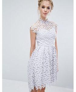 Chi Chi London | Кружевное Платье С Высоким Воротом