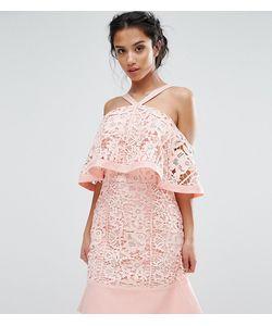 Jarlo Petite | Кружевное Платье Мини С Открытыми Плечами