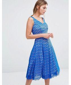 Coast | Приталенное Платье Со Свободной Юбкой Azaela