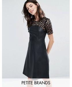 Vero Moda Petite | Короткое Приталенное Платье Из Искусственной Кожи С Кружевом