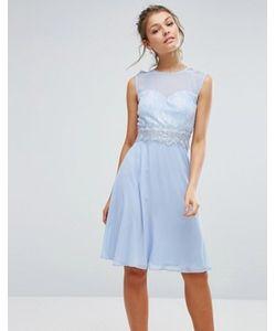 Elise Ryan | Платье Миди С Кружевным Лифом И Вырезом Сердечком