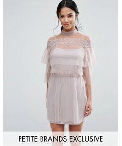 True Decadence Petite | Плиссированное Платье Мини С Кружевными Вставками