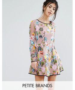 True Decadence Petite | Короткое Приталенное Платье С Длинными Рукавами И Вышивкой